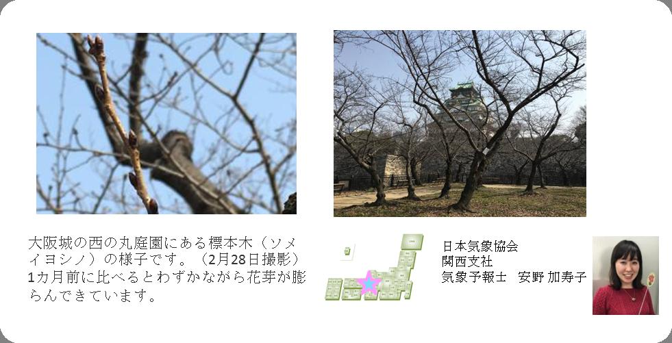 日本気象協会関西支社コメント