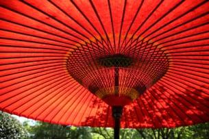 「熱中症ゼロへ」プロジェクトが訪日外国人へ熱中症予防を啓発 あおいで熱中症対策!紙製の扇子型リーフレットを新たに配布開始 日ざしをよける体験として、日本の伝統的な庭園にて和傘の無料貸し出しも