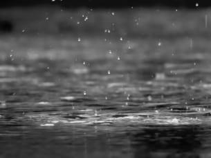(防災レポート)台風19号の降雨量と一級河川「計画降雨」の比較を行いました