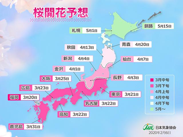 桜開花予想(第1回)