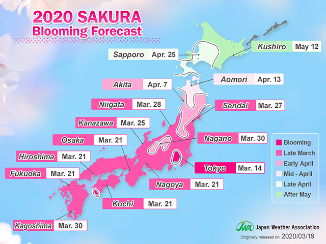 2020 SAKURA Blooming Forecast