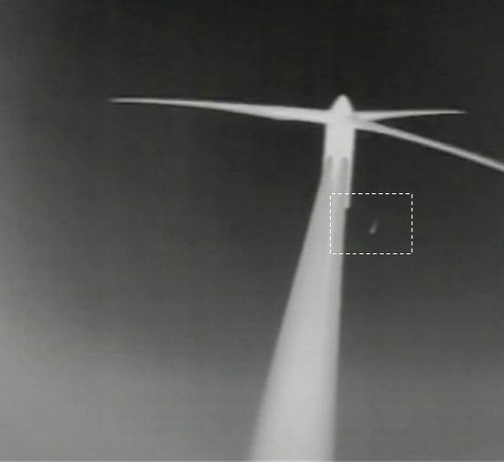 「バードストライク検知システム」 赤外線カメラで撮影した画像イメージ