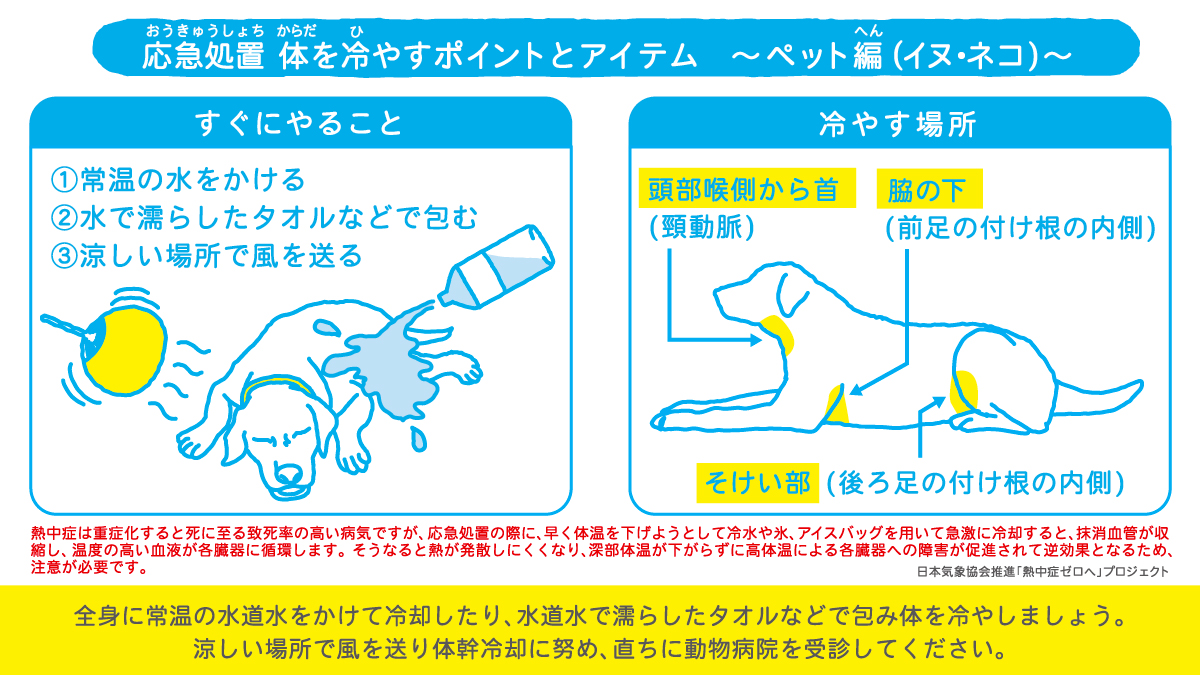 2008_ペットの熱中症対策_3