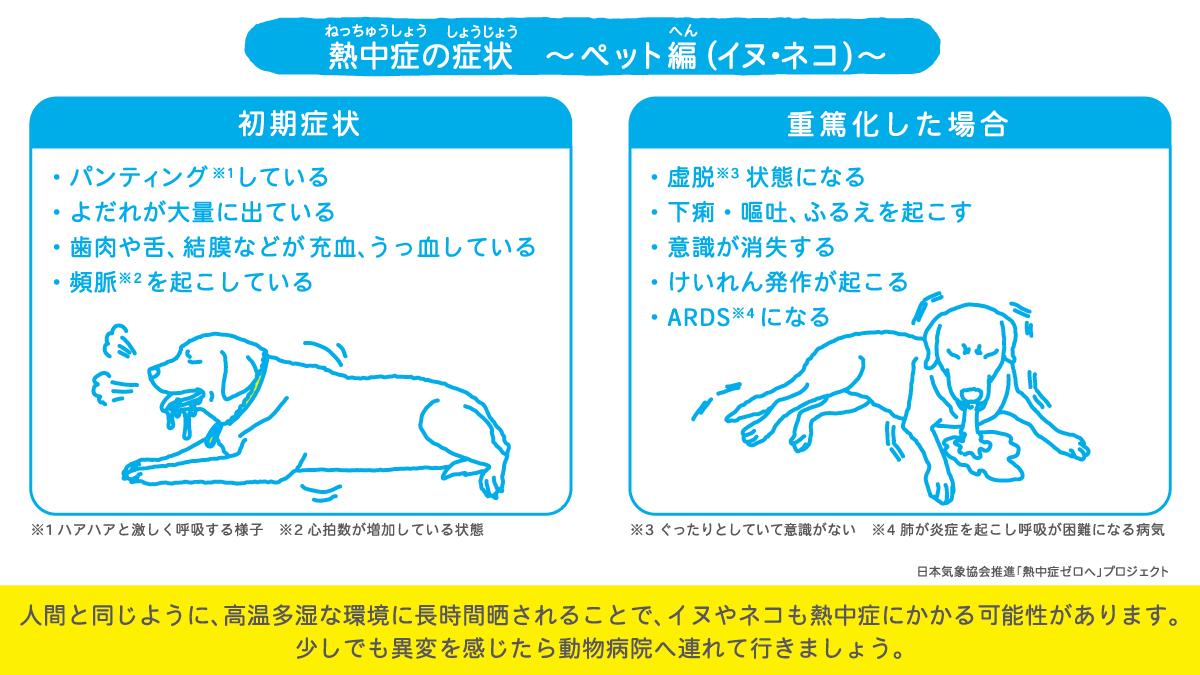 2008_ペットの熱中症対策_1