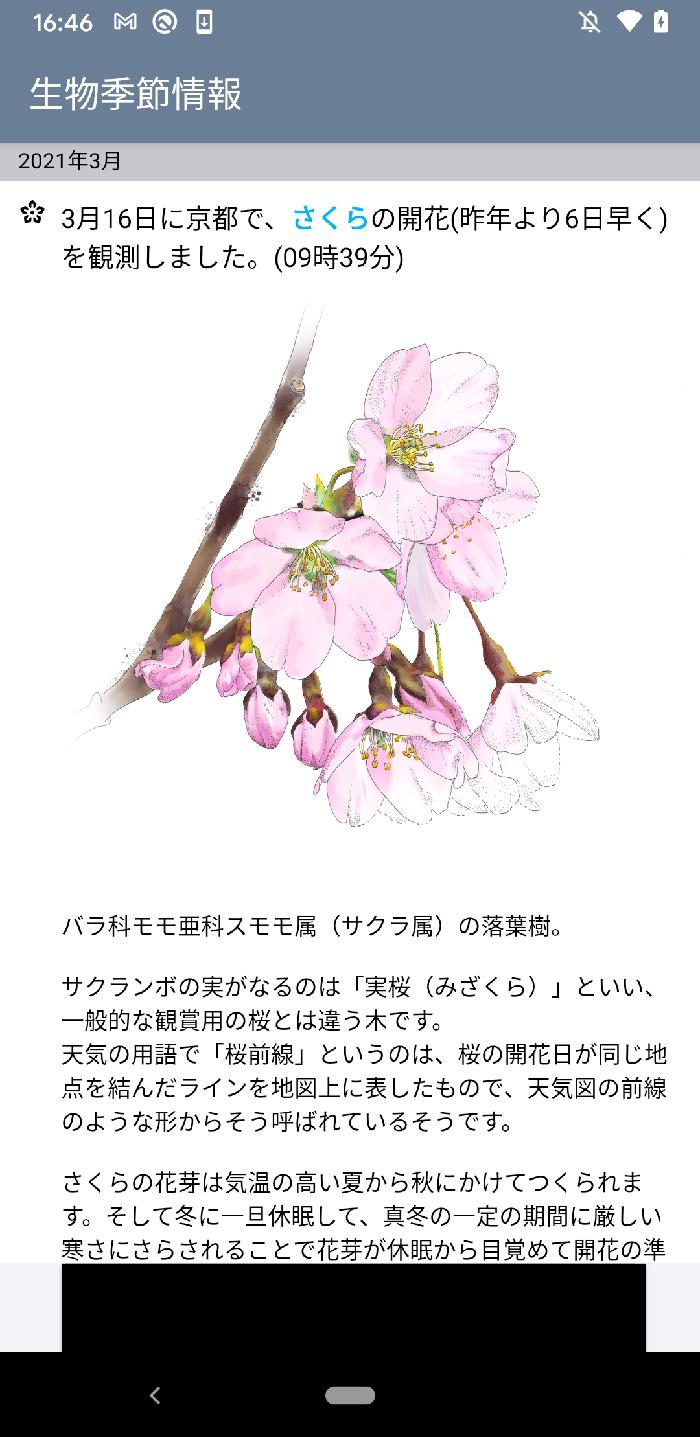 生物季節情報イメージ