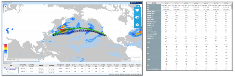 図2 最適航海計画の画面例